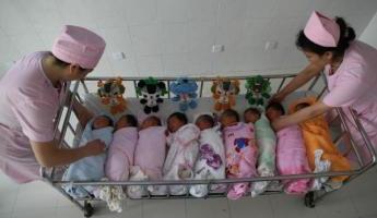 8-bebes